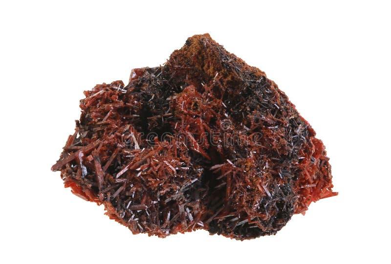 Crocoite – Gekristalliseerd Specimen van Tasmanige royalty-vrije stock afbeeldingen