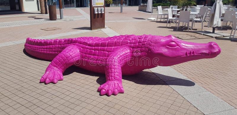 Crocrodile rosado foto de archivo libre de regalías
