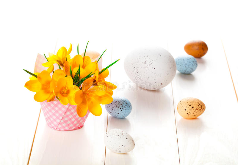 Crocus flowers on white wooden background, spring decoration wit stock photos