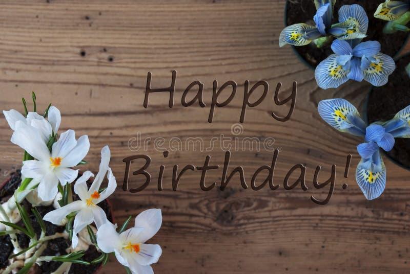 Crocus And Hyacinth, Text Happy Birthday stock photo