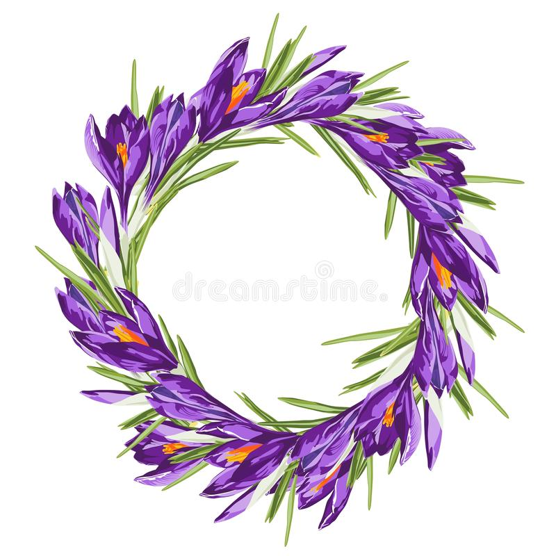 Purple crocus spring flower wreath. Watercolor style illustration on white background. vector illustration