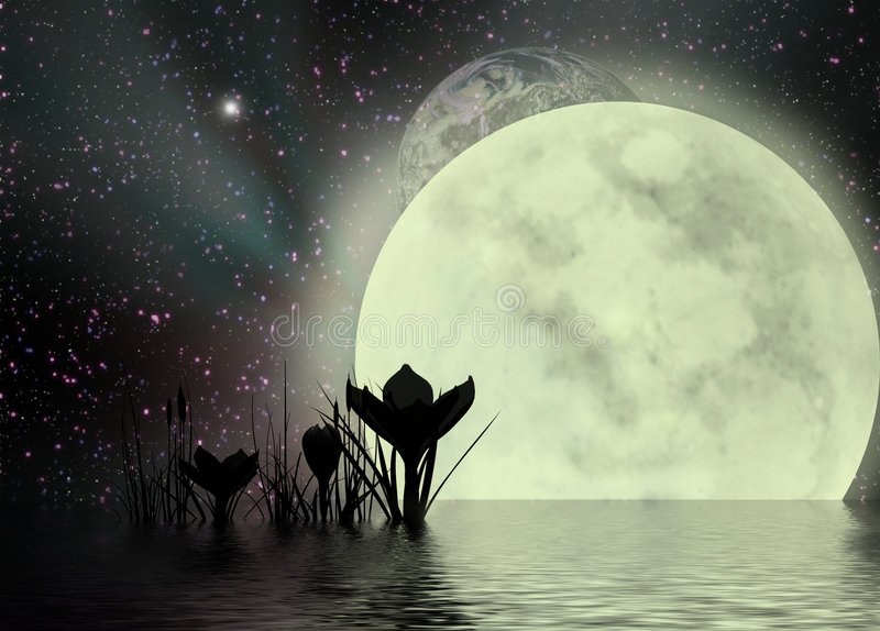Crocus & Surreal Moonscape Royalty Free Stock Photo