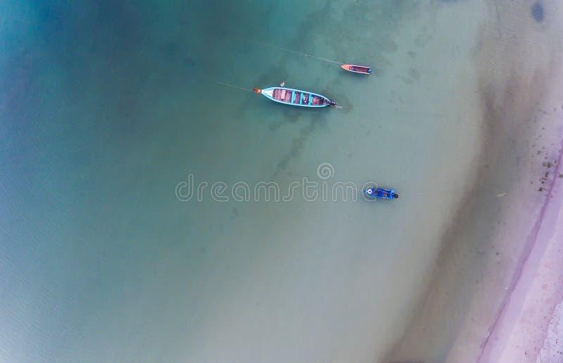 Crogiolo aereo di coda lunga della spiaggia tropicale immagini stock