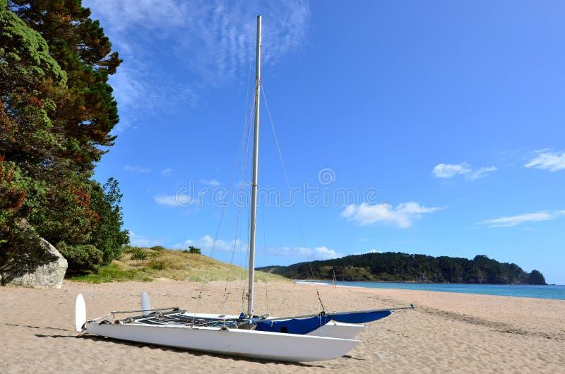 Crogiolo di catamarano su acqua calda Bech - Nuova Zelanda fotografia stock libera da diritti