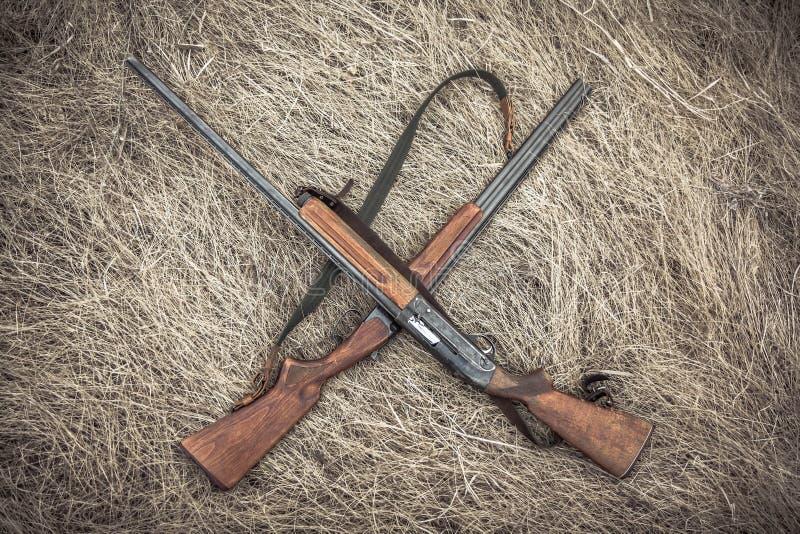 Croisé chassant des fusils de chasse sur l'herbe sèche sur la meule de foin comme fond de chasse photos stock