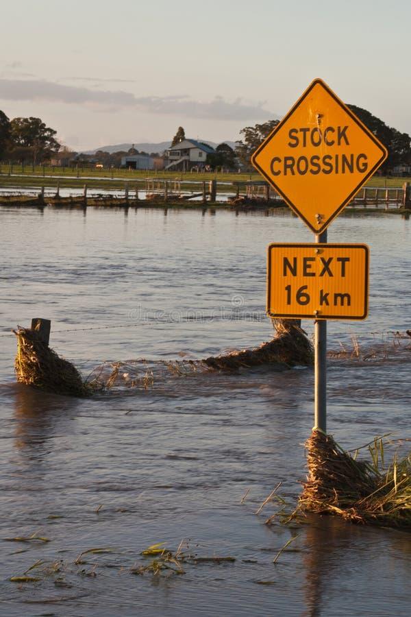 Croisement courant pendant l'inondation images libres de droits