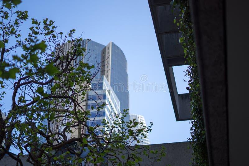 Croisement d'argile et de Davis Street à San Francisco photo stock
