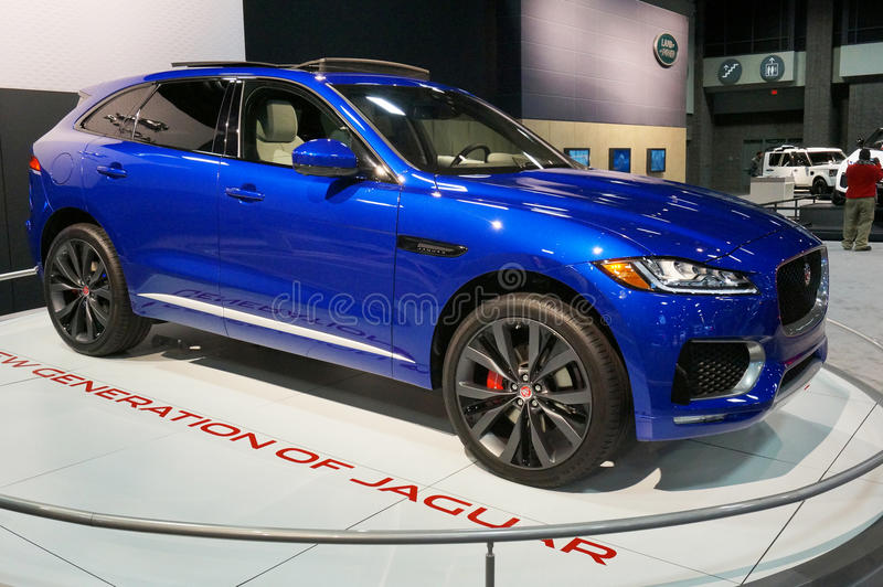 Croisement de F-pas de Jaguar photos stock
