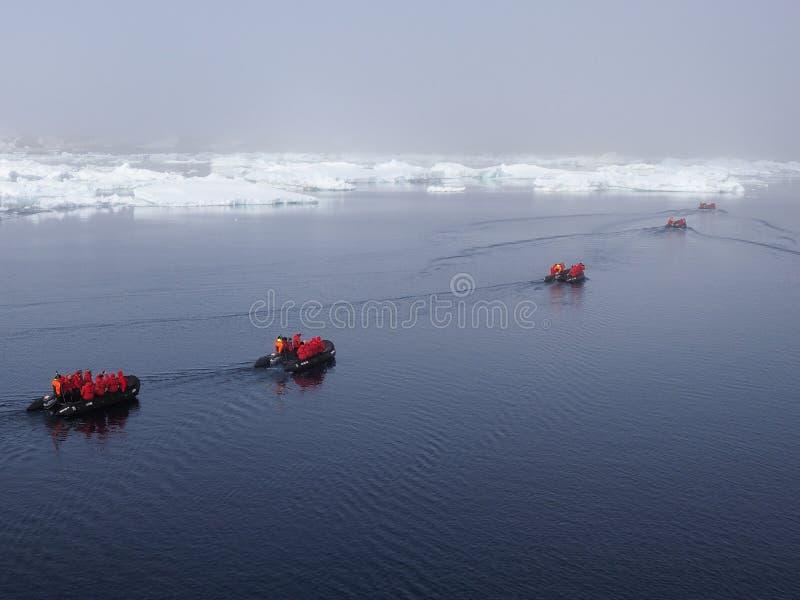 Croisière de l'Antarctique photo libre de droits