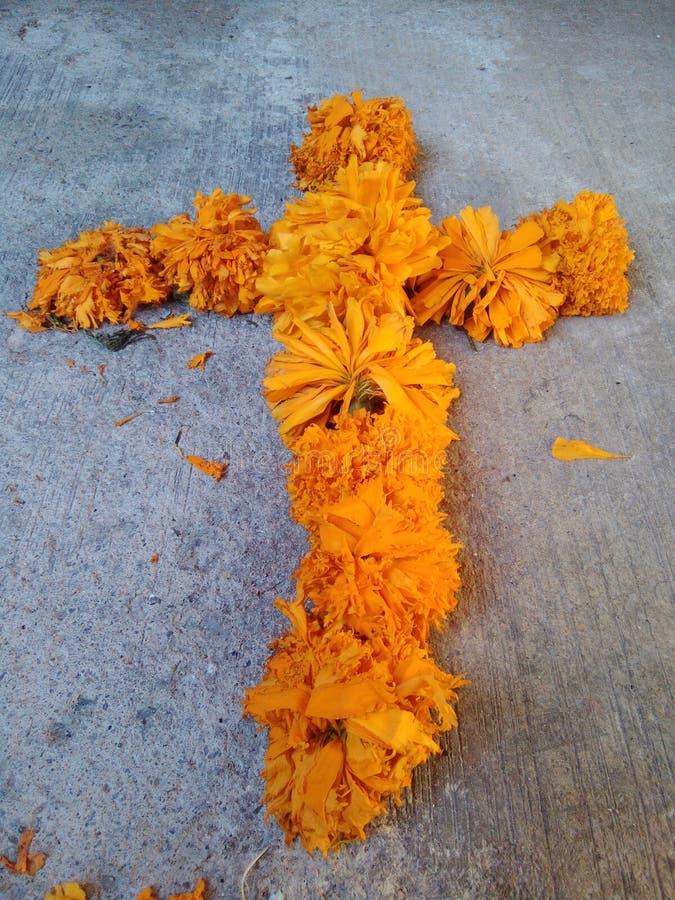 Croisière des fleurs images libres de droits