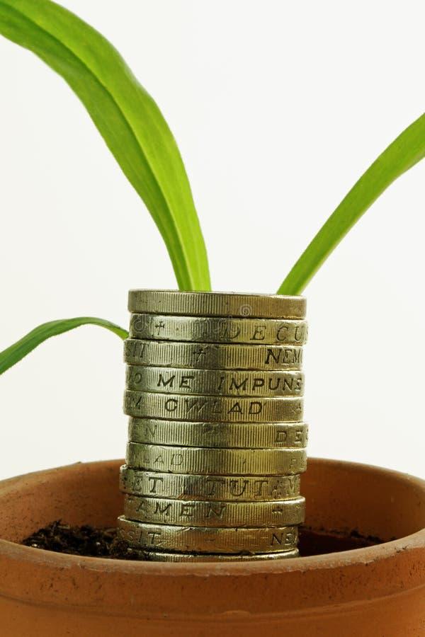 Croissance économique photos libres de droits
