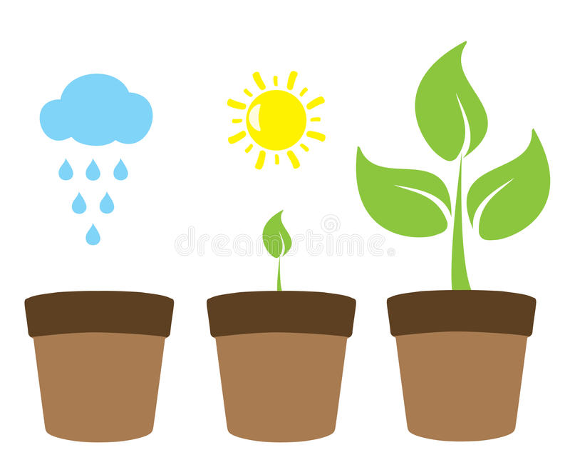 Croissance de plantes illustration libre de droits