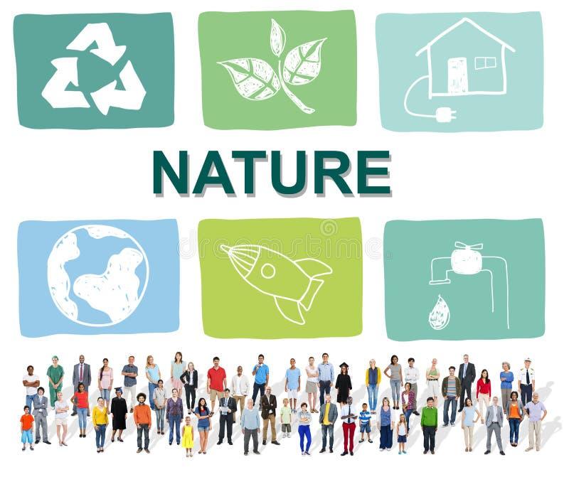 Croissance environnementale C de protection de conservation de la vie de conservation photos libres de droits