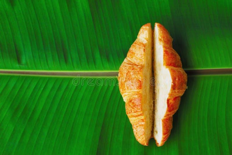Croissant στοκ φωτογραφία
