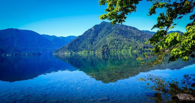 Croissant de lac photos stock