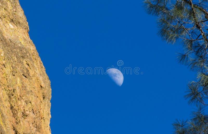 Croissant de lune et pin au monument national de sommets dans Califor photo stock