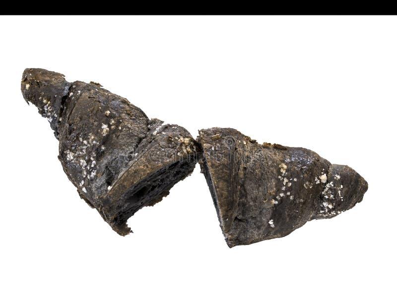 Croissant del carbone, isolato su bianco Colore nero dovuto i vegetabilis di medicinalis del carbo del carbone vegetale aka fotografie stock