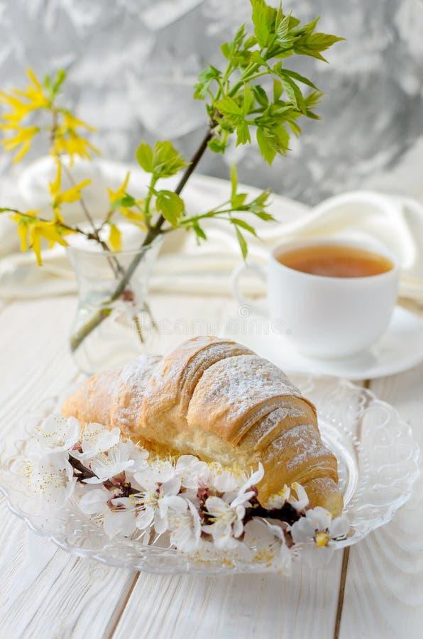 Croissant en kersenbloesem stock afbeeldingen