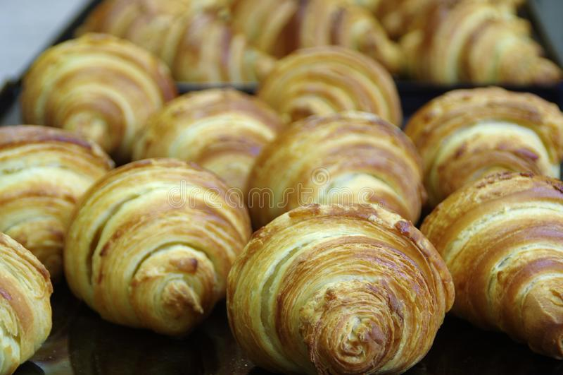 Croissant fresco imagens de stock
