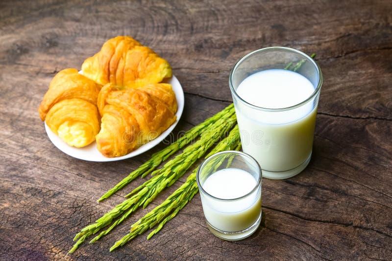 Croissant no prato com leite do arroz e orelha do arroz em t de madeira velho foto de stock royalty free