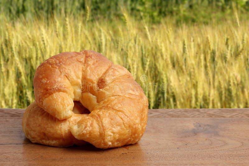 Croissant piekarnia na teakwood stołu oświetleniu i jęczmienia polu obrazy stock