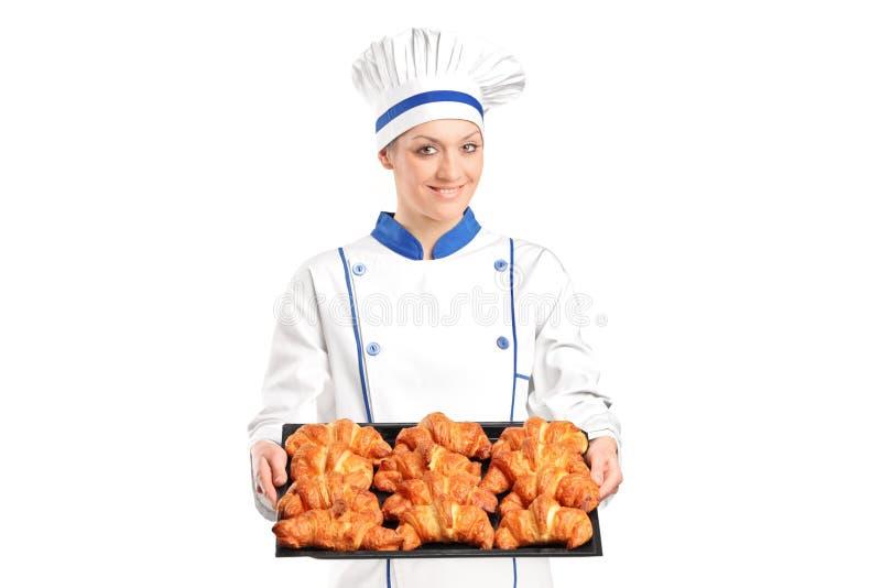Croissants cotti holding femminile del panettiere immagini stock