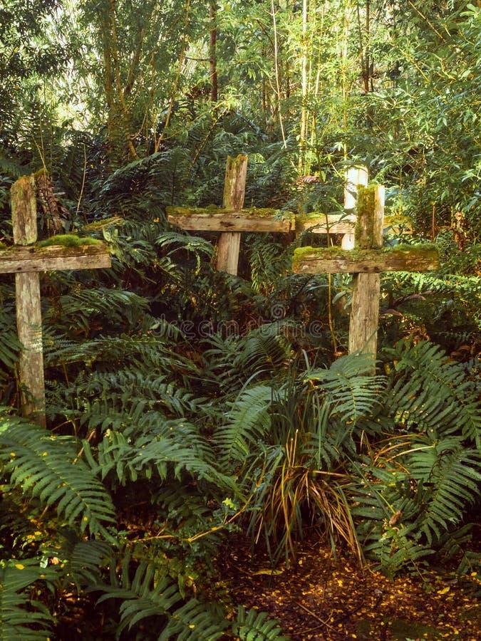 Croix en bois dans le cementery patagonian au Chili, Caleta Tortel Île morte dans Baker de rivière Forêt photographie stock