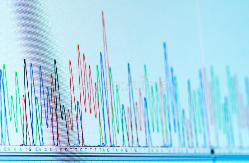 Cromatograma do ADN fotografia de stock royalty free