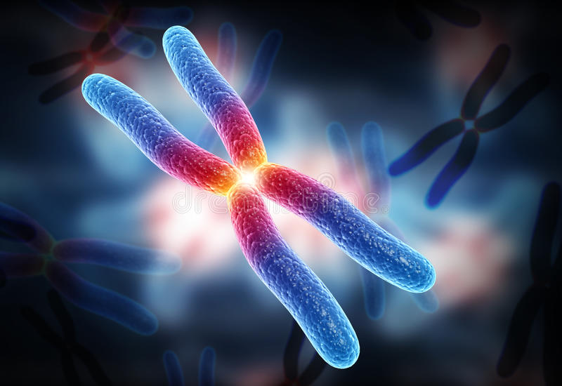 Cromosoma fotografia stock