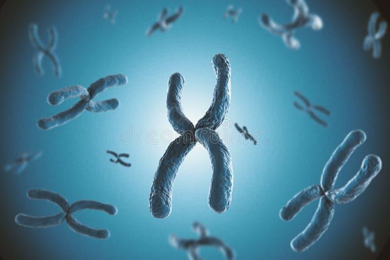 Cromosoma blu fotografia stock