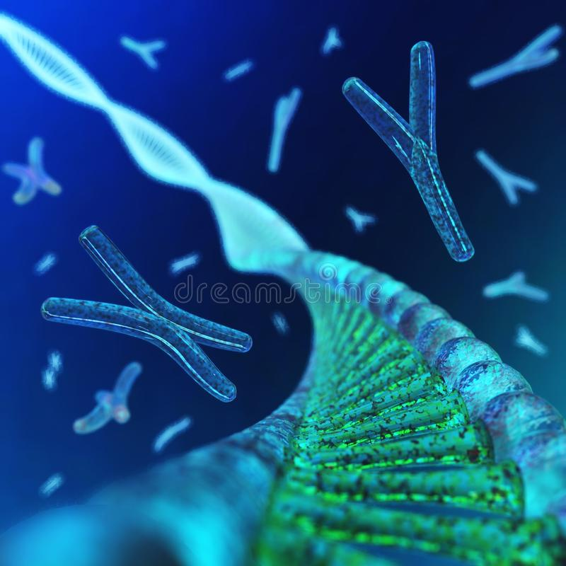 cromosoma DNA royalty illustrazione gratis