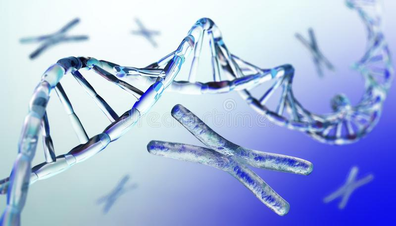 Cromosoma, DNA fotografia stock