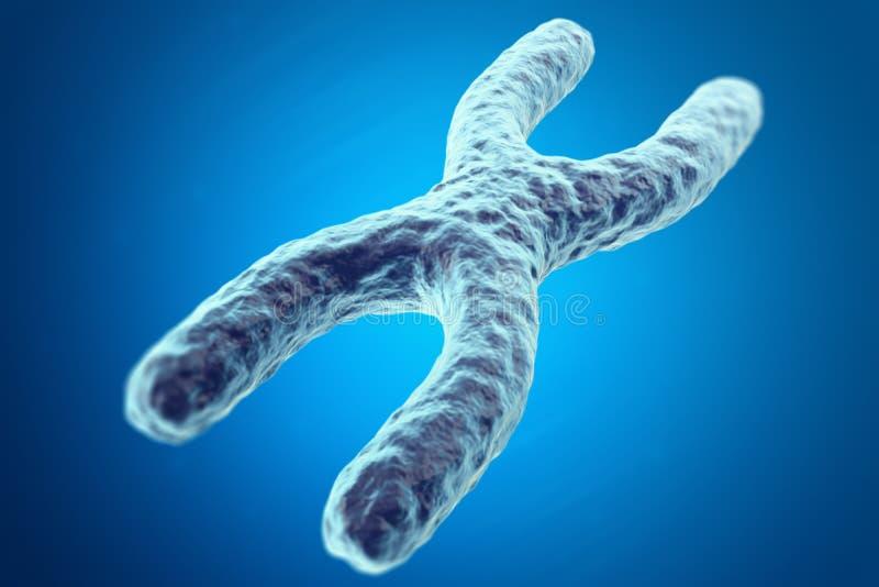 Cromosoma X en fondo azul con el efecto de foco, concepto científico ilustración 3D stock de ilustración