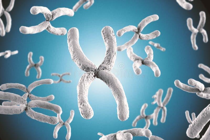 Cromossoma branco fotografia de stock