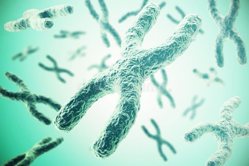 Cromossomas no fundo verde, ilustração científica do conceito 3d ilustração royalty free