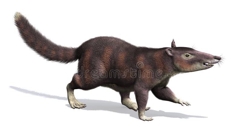 Cronopio - Prehistoric Mammal. The cronopio is an extinct prehistoric mammal that lived during the Late Cretaceous Period, about 99 million years ago stock illustration