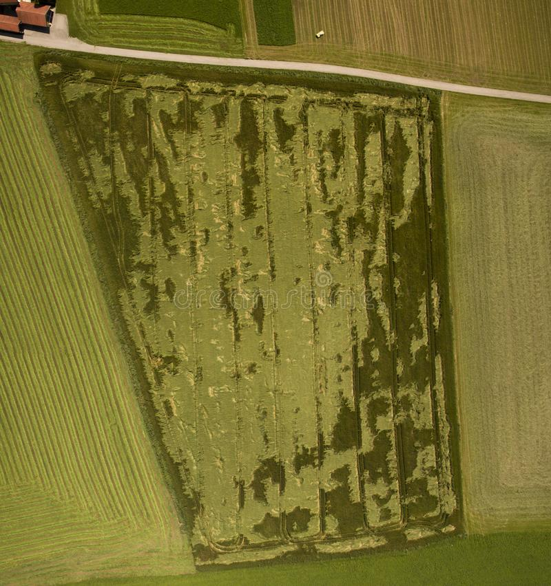 Crop damage in a field, aerial view, near Salzburg, Austria. In Europe stock photos