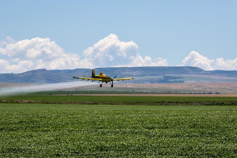 crop duster fotografia stock