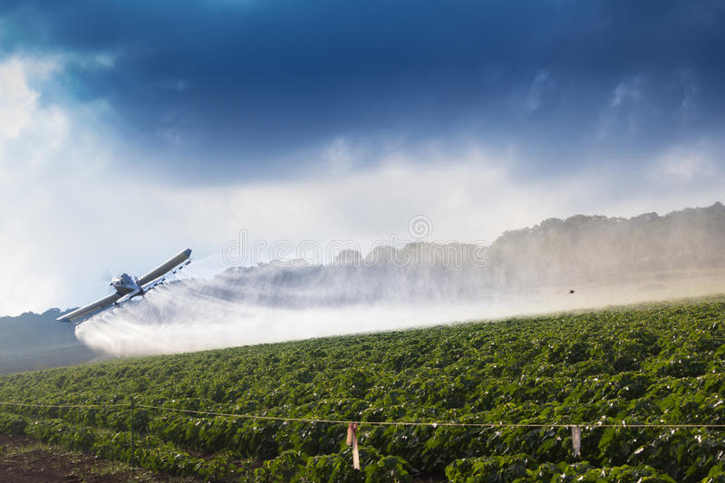 crop duster fotografia stock
