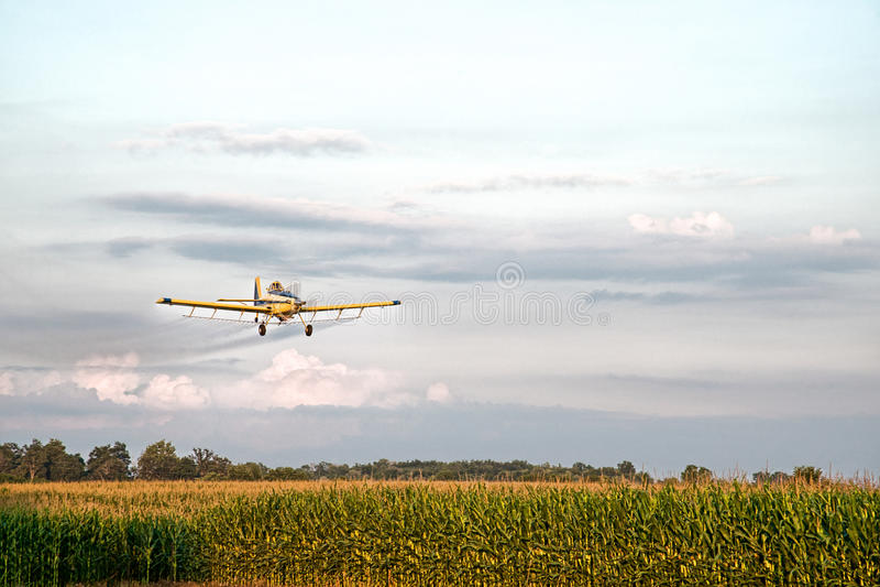 Crop Duster Spraying Corn Field Royalty Free Stock Photo