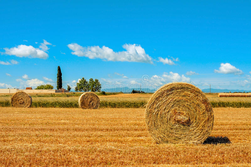 Crop field in Spain with round straw bales after harvesting stock image