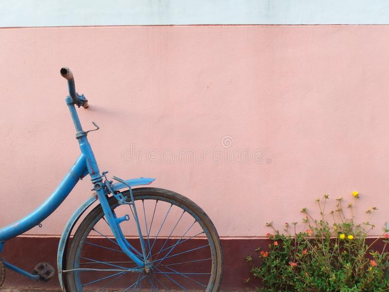 Old blue bicycle and flowers in front of the pink wall royalty free stock photos