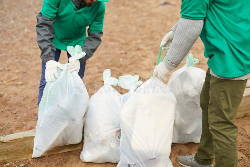 Crop volunteers tying bags. Crop unrecognizable volunteers standing on sand and tying bags with litter stock photos