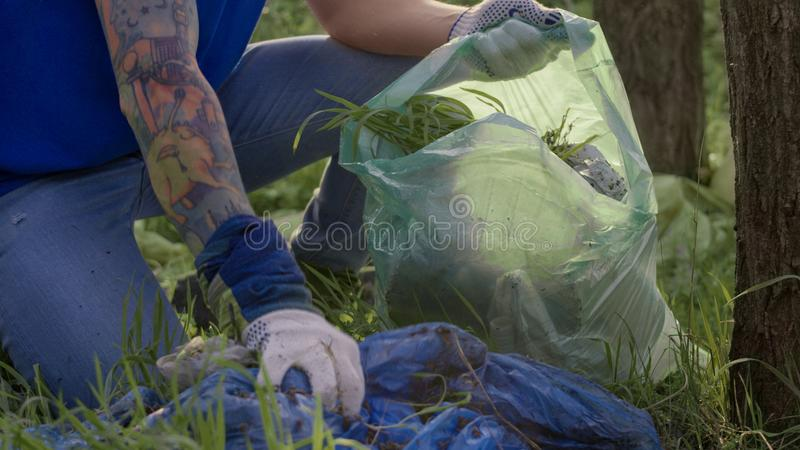 Crop volunteers picking up trash. Crop view of volunteers working in team and collecting garbage into plastic bags working in green woodland royalty free stock photo