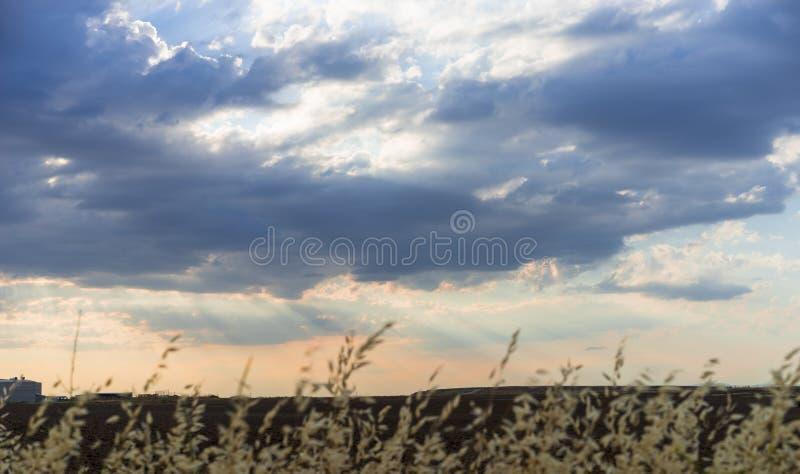 Cropfieldhemel met wolken en zonlicht bij zonsondergang kleurrijk en c stock foto's