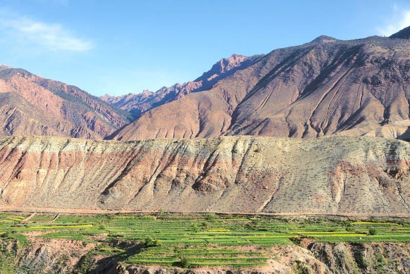 Cropland горы стоковые изображения rf