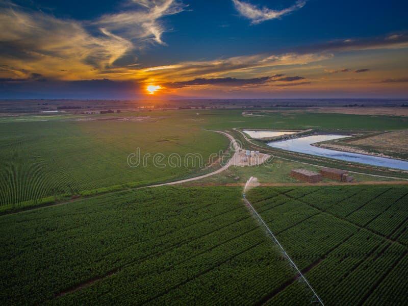 Cropland и пруд удерживания на заходе солнца стоковые изображения rf