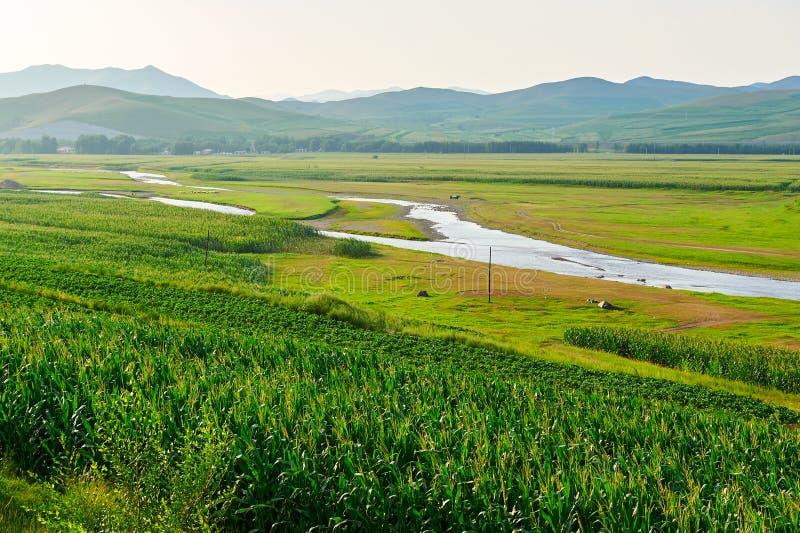 Cropland и река стоковое изображение