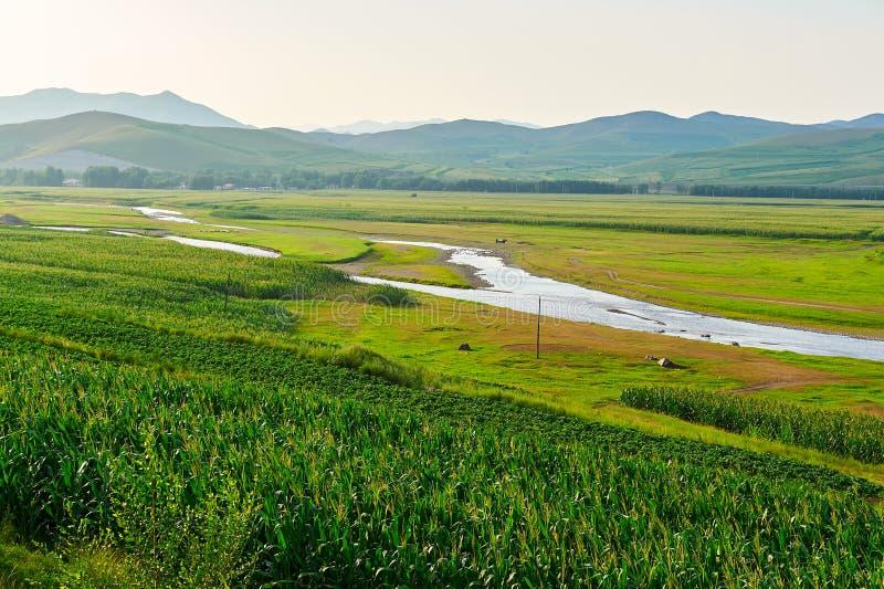Cropland и река стоковые фотографии rf
