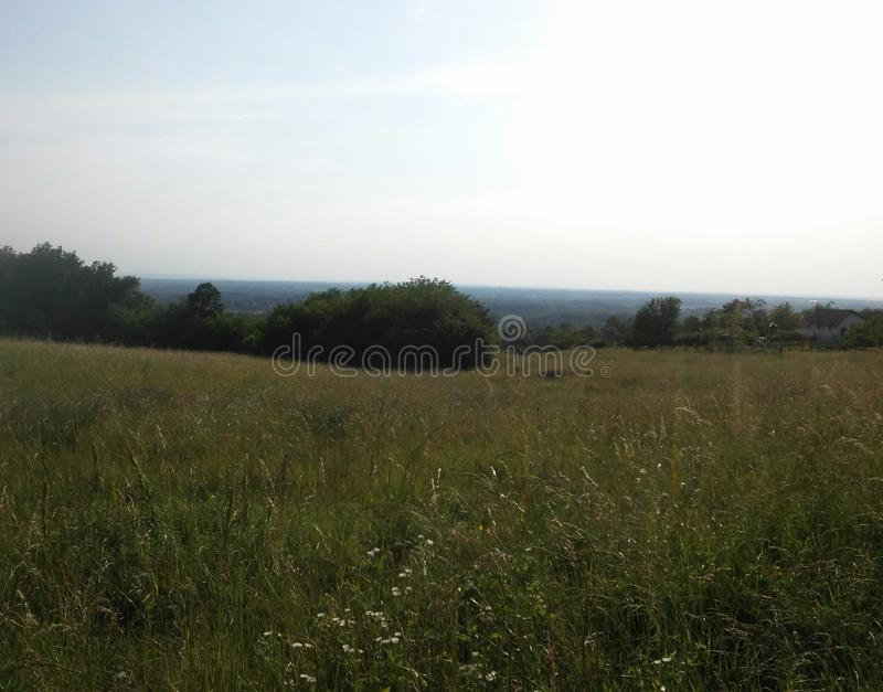 cropland холмов сельской местности стоковая фотография rf